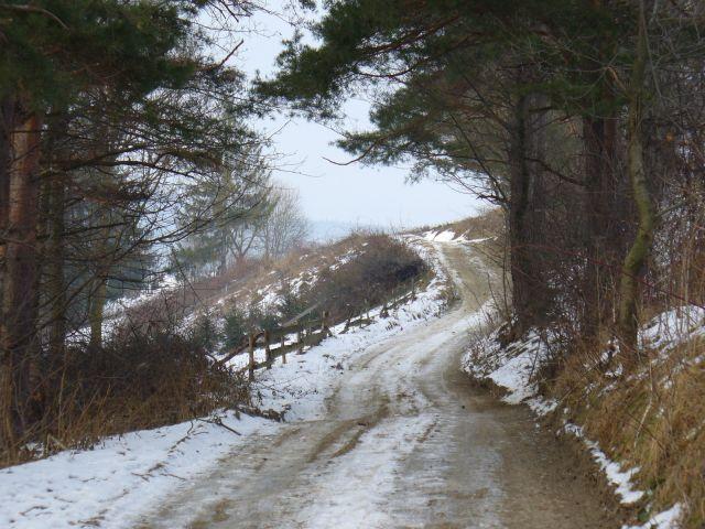 Kręta zamarznięta droga - kliknij żeby powiększyć