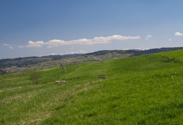 Łąka i góry - kliknij żeby powiększyć