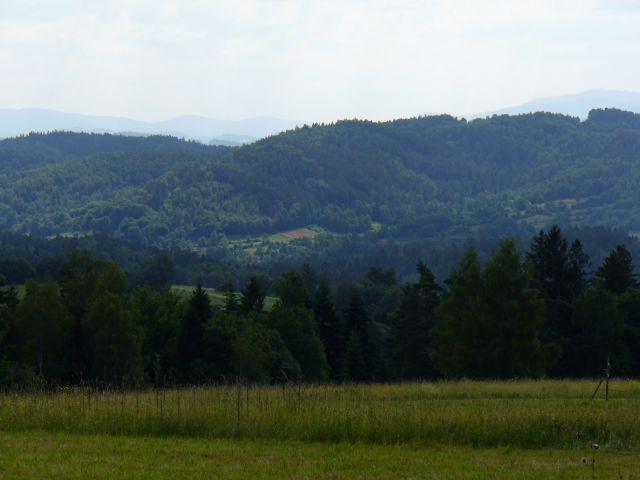 Las i góry - kliknij żeby powiększyć