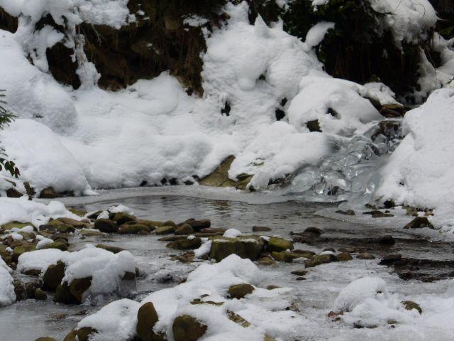Leśny strumyk zimą - kliknij żeby powiększyć