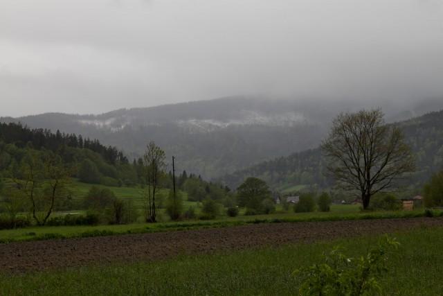 Mokra wiosna - kliknij żeby powiększyć