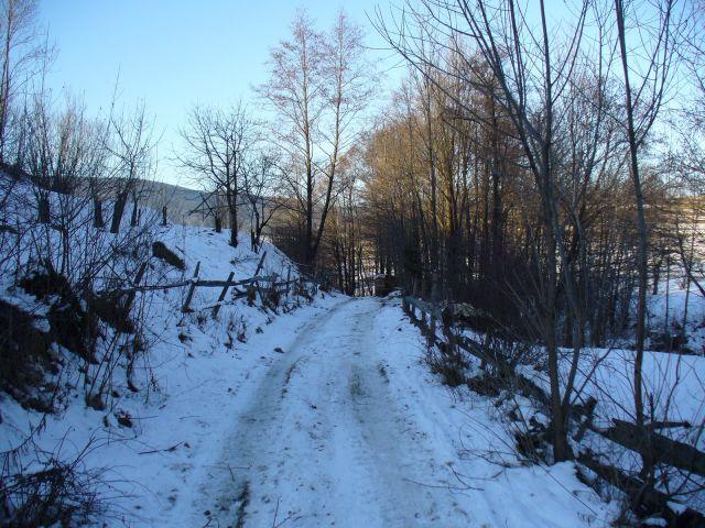 Polna droga zimą - kliknij żeby powiększyć