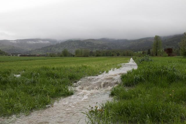 Polna rzeka - kliknij żeby powiększyć