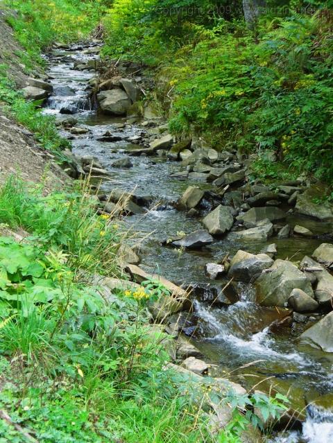 Potok Sidzina - kliknij żeby powiększyć
