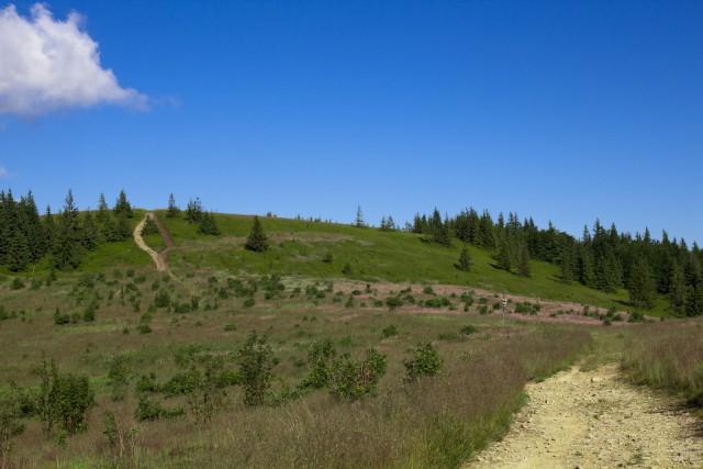 Przełęcz Kucałowa - kliknij żeby powiększyć