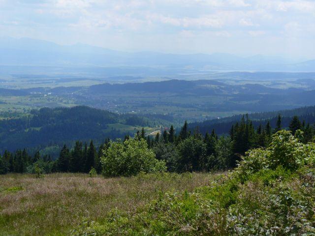 Przełęcz Zubrzycka - kliknij żeby powiększyć