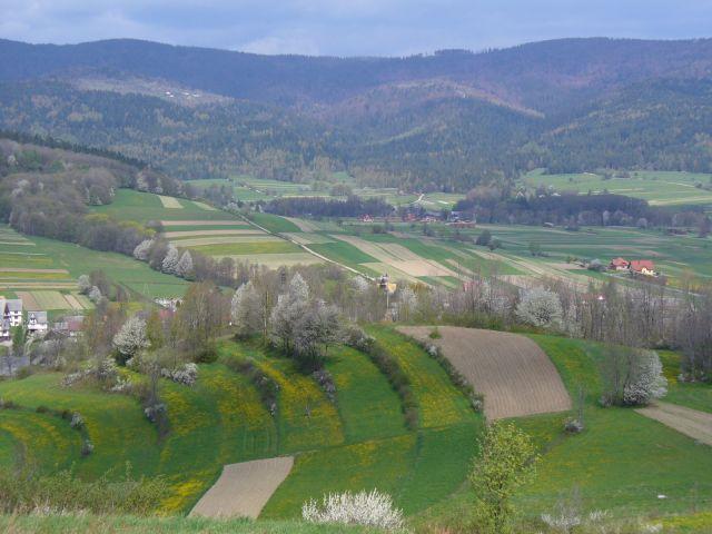 Wiosenny pejzaż - kliknij żeby powiększyć
