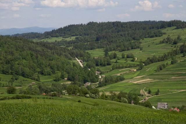 Zielona dolina - kliknij żeby powiększyć