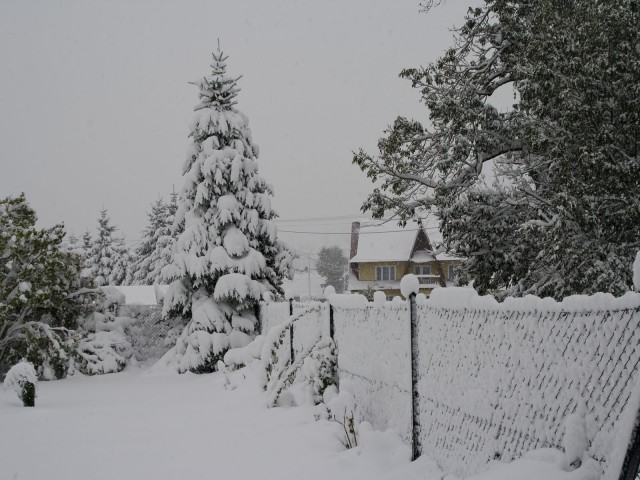 Zima w październiku - kliknij żeby powiększyć