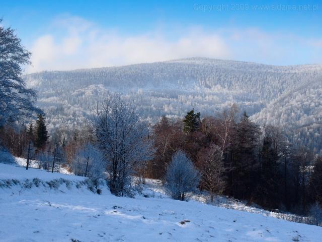 Zima w pełni - kliknij żeby powiększyć