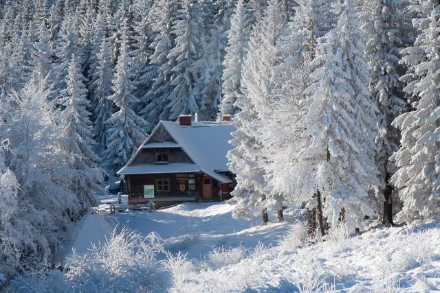 Zimowe schronisko - kliknij żeby powiększyć