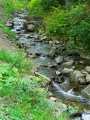 Potok Sidzina w Sidzinie