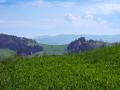 Zielona łąka i dal w Sidzinie