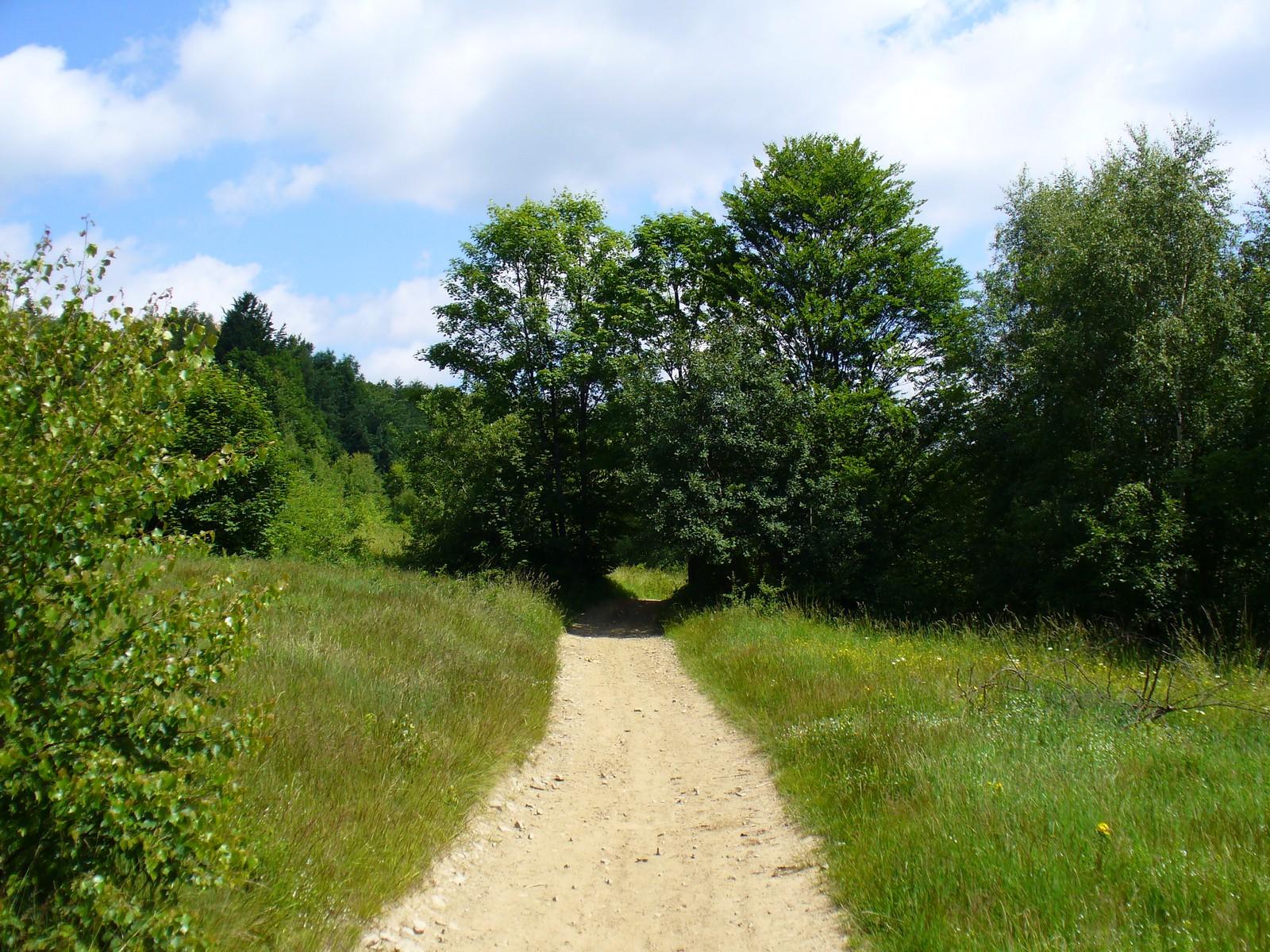 Droga na Hali Malinowe