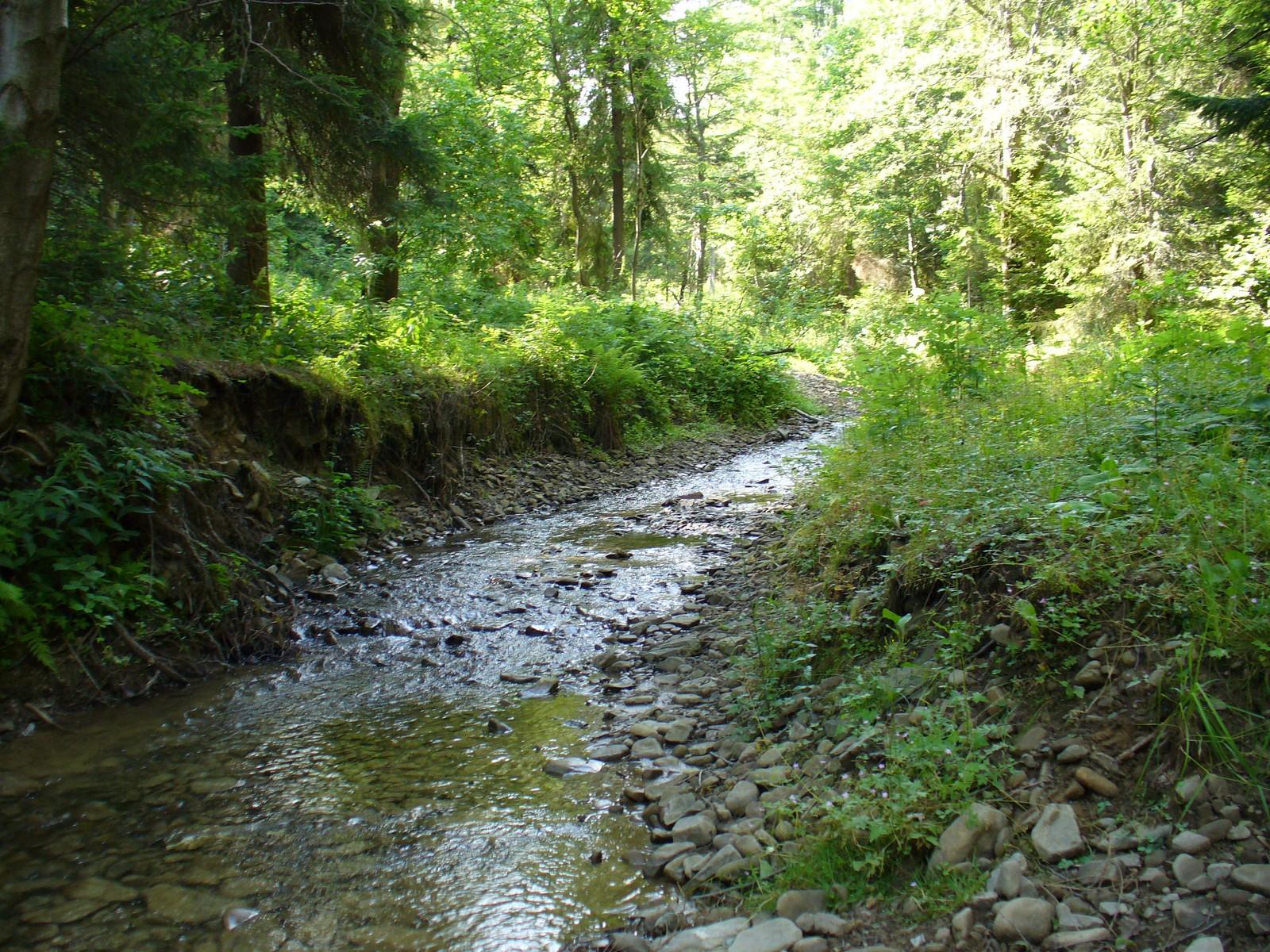 Flakowy Potok