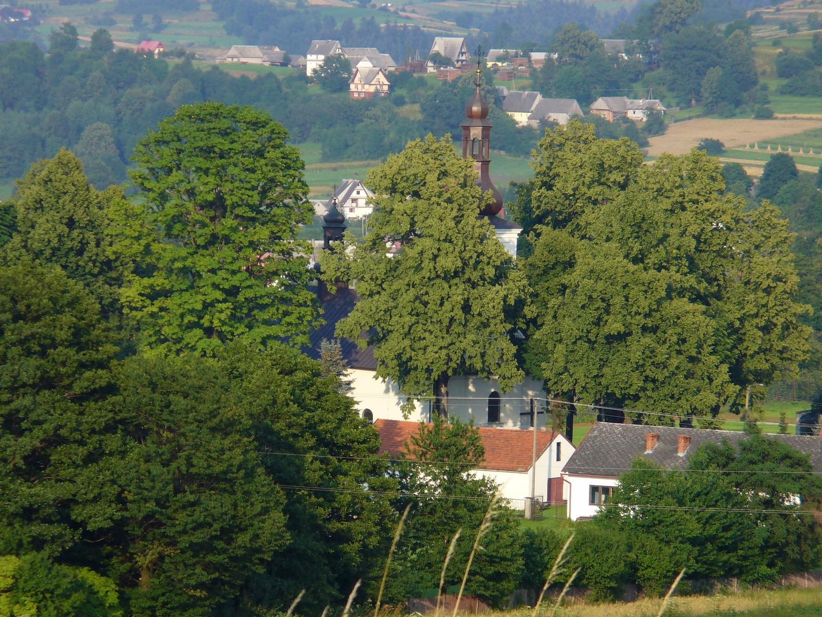 Kościół za drzewami