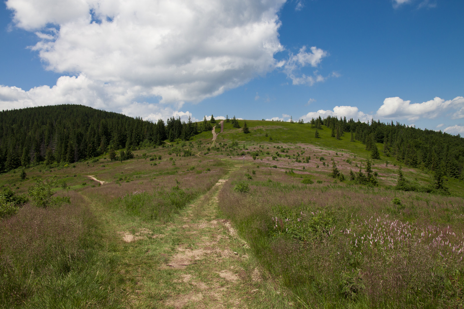 Kucałowa Przełęcz