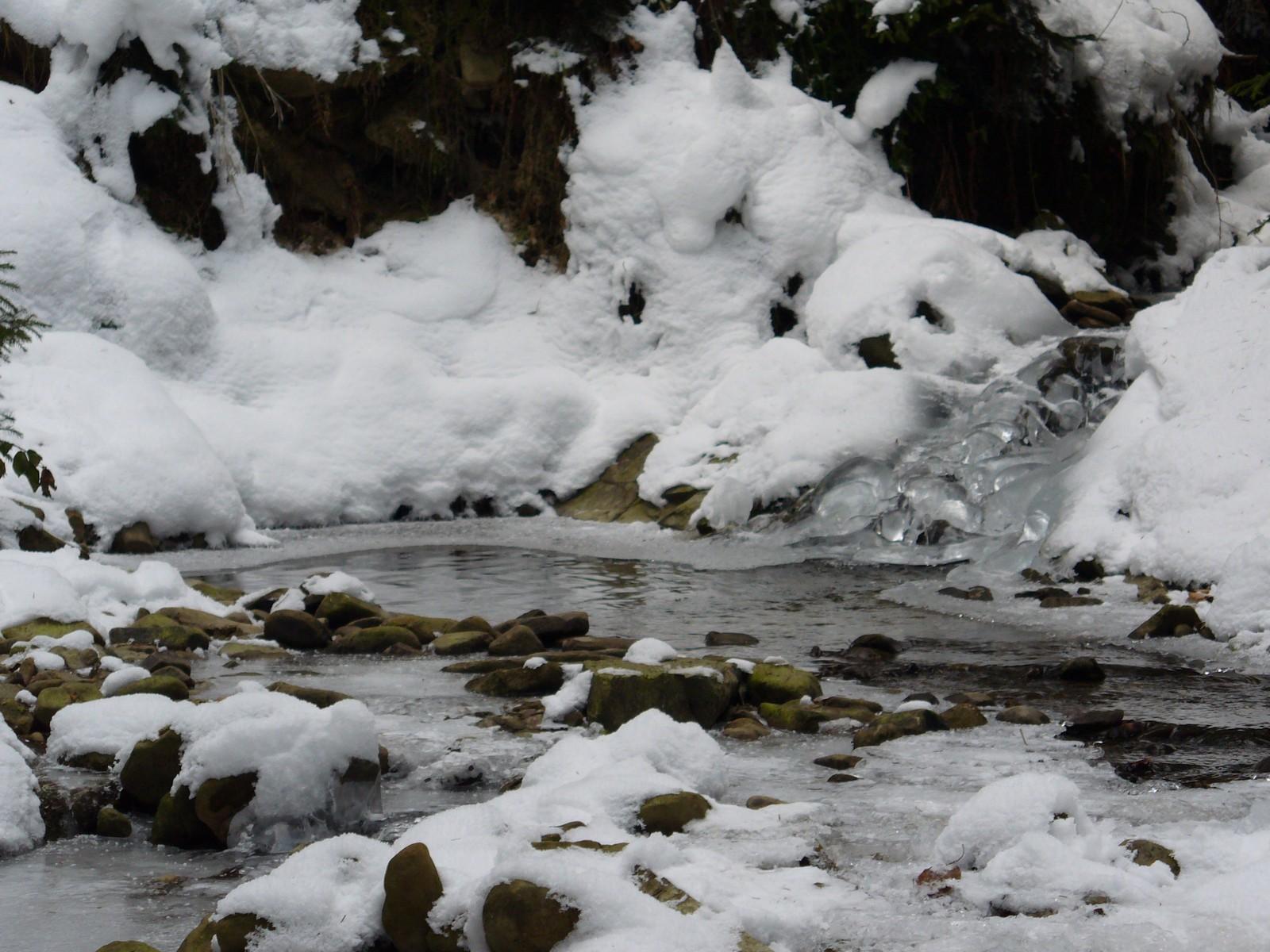 Leśny strumyk zimą