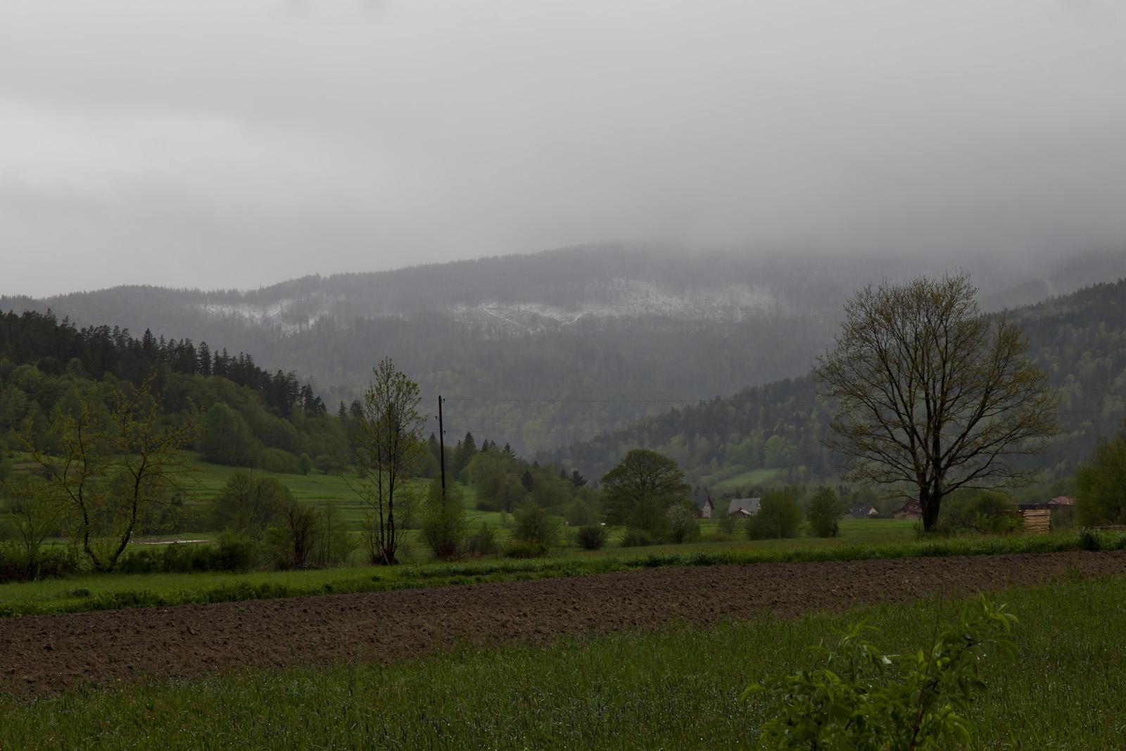 Mokra wiosna