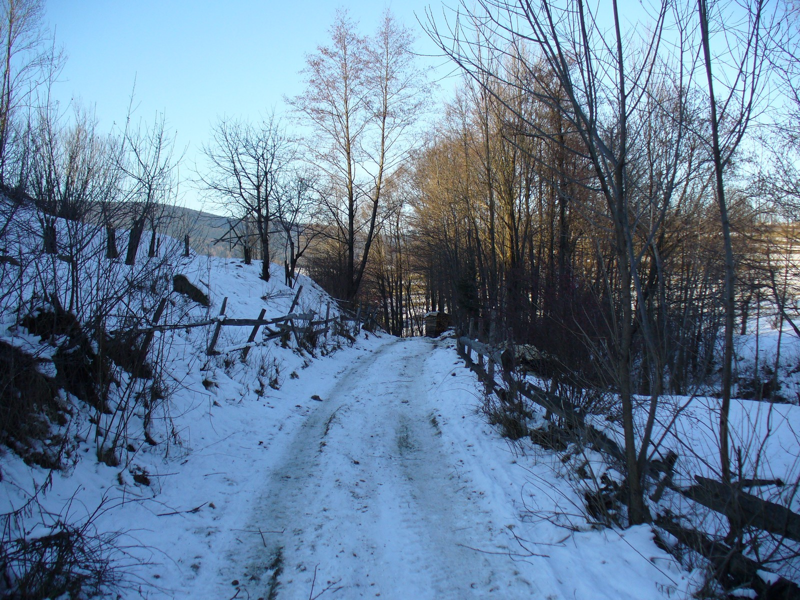 Polna droga zimą