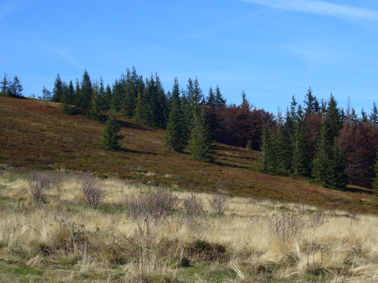 Przełęcz Kucałowa