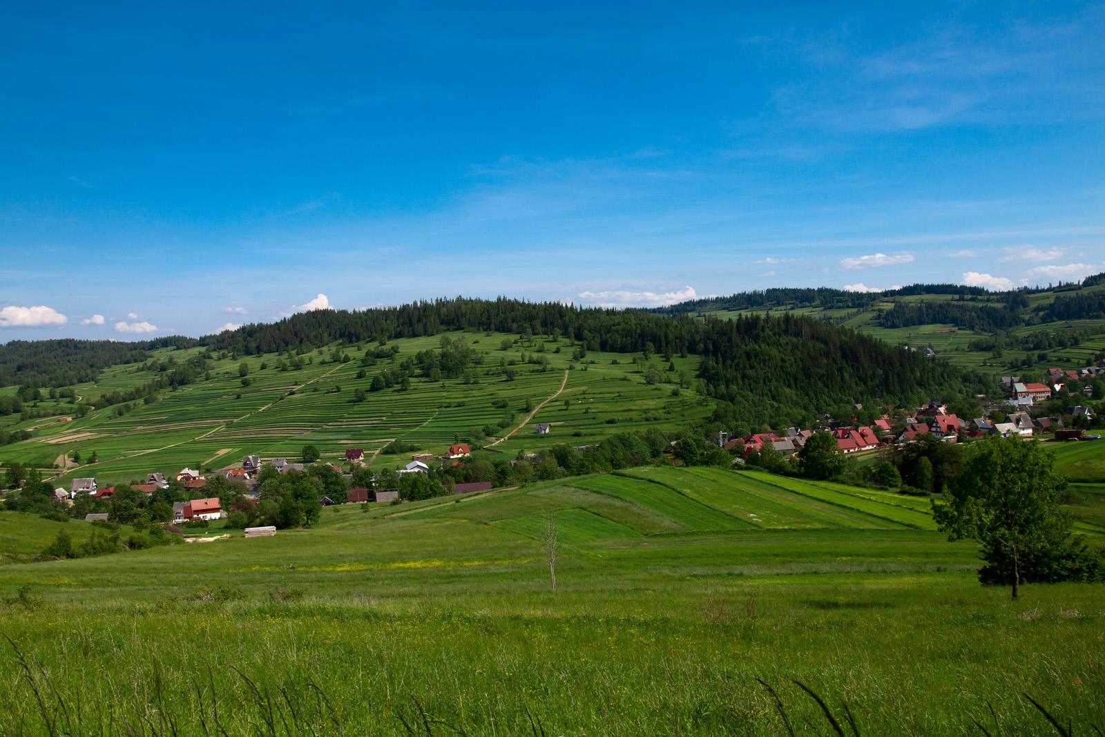 Zielona Sidzina