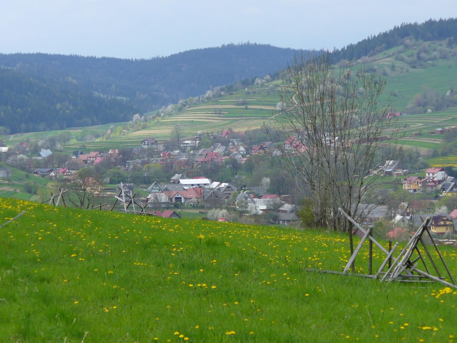 Zielona łąka i domki