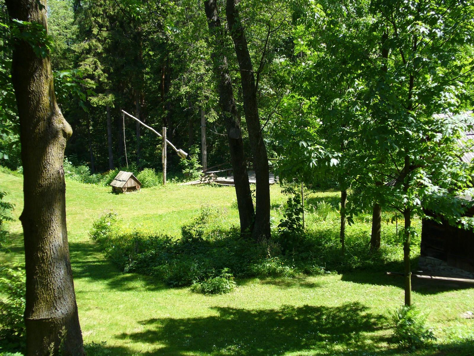Zielone podwórko